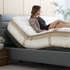 Queen Adjustable Bed On Clearance