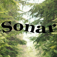 Sales Manager in Training - Sonar Midtown Plaza