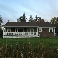 Beautiful 4 bedroom house available now - month to month rent