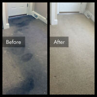 Carpet & Upholstery Cleaning Done Right! 613.627.3038