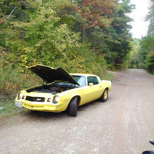 1978 Chevrolet Camaro Coupe (2 door)