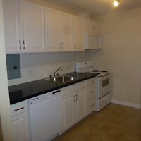 3 Bedroom Luxury Apt. - INCLUSIVE, NEWLY RENO'D, DOWNTOWN!