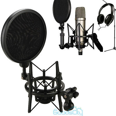 Audio Professional Condenser Microphone Mic Studio Sound Recording W Shock Mount