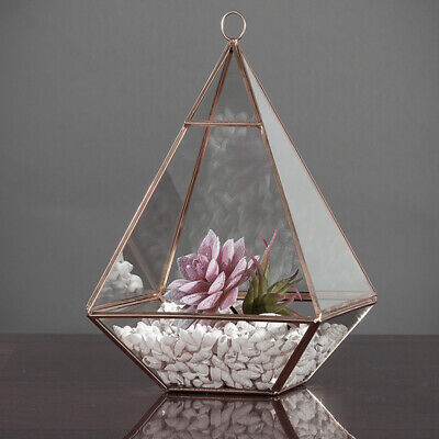 Geometric Pyramid Glass Terrarium Moss Succulent Plant Pot Planter Display Boxes