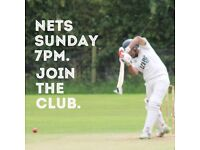 Looking for a cricket club?