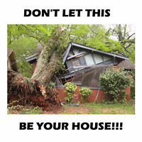 TREE SERVICES: Tree Removal / Wood Chipping / Chain Saw Services
