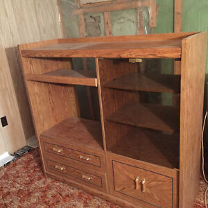 Vintage entertainment unit