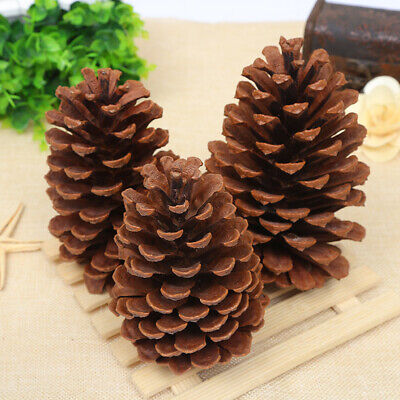 Pine Cone Christmas Tree Ornaments (15CM Large Natural Pine Cone Christmas Tree Decor Xmas Party Home Ornaments)