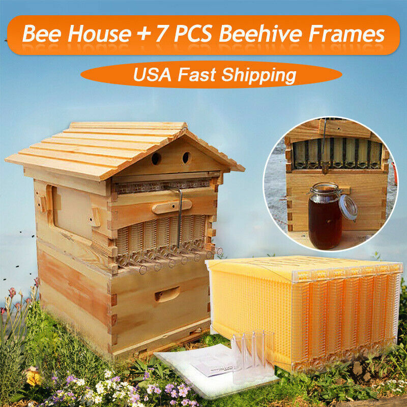 7PCS Free Flowing Beehive Frames Complete Bee Hive Set w/ Beekeeping House Box