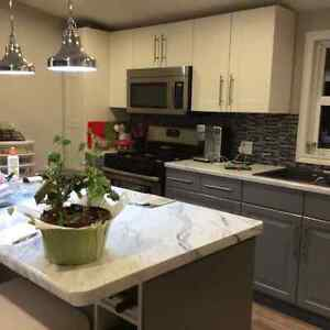 New renovated home for sale, new price Cambridge Kitchener Area image 3