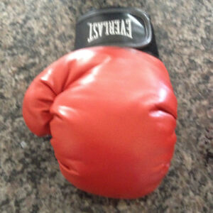 EVERLAST boxing & EVERLAST evergel striking gloves Strathcona County Edmonton Area image 3