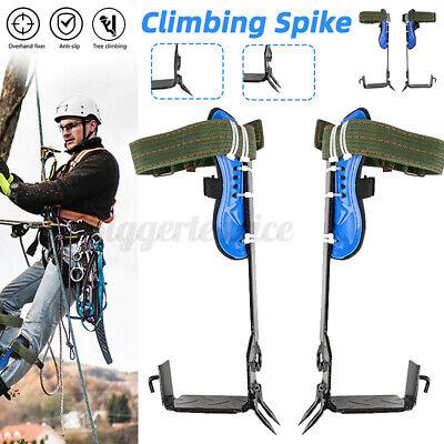 Tree Climbing Spike Set Safety Belt Lanyard Rope Pedal 12 Gears W