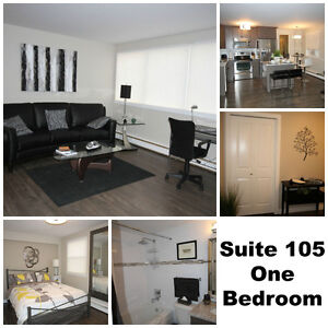 DOWNTOWN - FULLY FURNISHED ONE BEDROOM SUITES