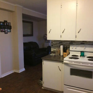 Beautiful fully fenced walkout basement apartment St. John's Newfoundland image 3
