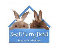 Small Furry Hotel - Small Animal Boarding