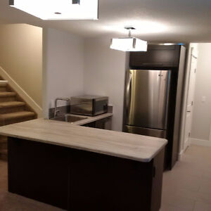 Furnished one-bedroom basement in-law suite available