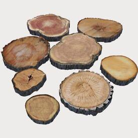 Rustic Log Slices - Weddings/Cake Stands/Decoration