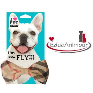 SO FLY! PET HEAD - NOEUD PAPILLON pour chien ou chat