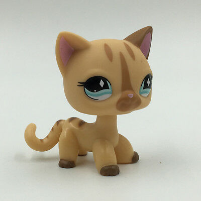 Littlest Pet Shop Toys Short Hair Cat Cream Stripe Kitty Diamond Eyes LPS #886