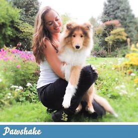 Pawshake are seeking Pet Sitters and Dog walkers! Sign up today! Free insurance included. Battersea.