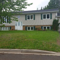 2 Bedroom Basement Apartment for rent avail. now