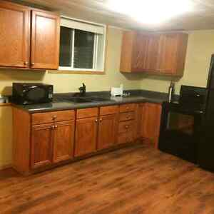 Fully Furnished Two Bedroom Apartment For Rent In Carlyle, Sk.