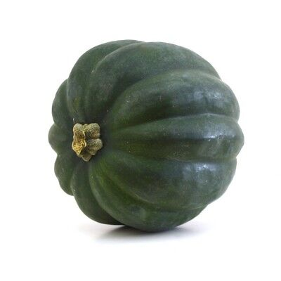 Heirloom Table Queen Acorn Squash 50 Seeds Non-GMO USA + FREE Gift & COMB S/H