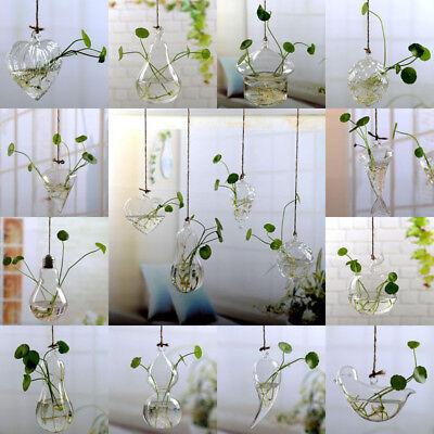 Wall Hanging Light Bulb Glass Vase Flower Plant Terrarium Container Home Decor