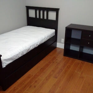 Room for Rent - NEW RENO, Central location