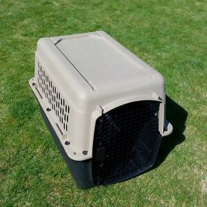Medium Dog Kennel - Almost Brand New!