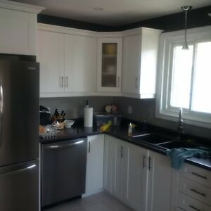 Pantry kijiji free classifieds in brantford find a job for Kitchen cabinets kijiji