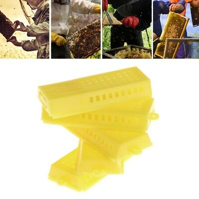 5pcs Plastic Bee Boxs Honey Beekeeping Hive Cage Catching Tool Moving Equipment