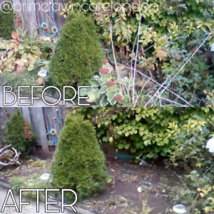 Fall Flower Bed Clean Up / Flower Bed Cleaning / Fall Cleanups