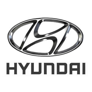 Thousands of New Painted Hyundai Door Mirrors & FREE shipping