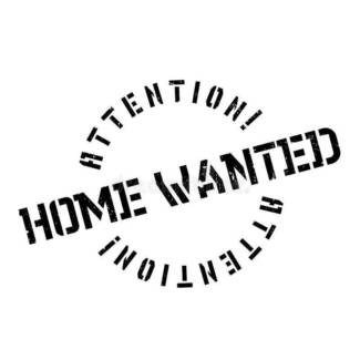 Wanted: Family Farm or Large Home