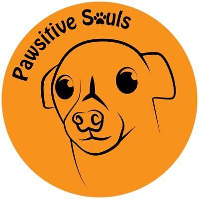 Pawsitive Souls