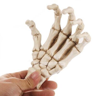 Resin Skull Skeleton Human Palm hand finger bone Mold Halloween Party Prop Craft