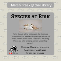 March Break at the Library