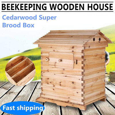 New Beekeeping Cedarwood Super Brood Box For Auto Honey Bee Hive Frames Sale