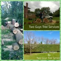 Tree Removal Tree Trimming by Two Guys Tree Service 289-600-1374