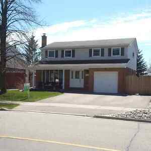 Beautifully Furnished 4 bdrm home in mature neighborhood Kitchener / Waterloo Kitchener Area image 1
