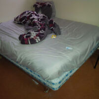 bed and bed farm with sheets and pillows! HUGE MOVING SALE!CHEAp