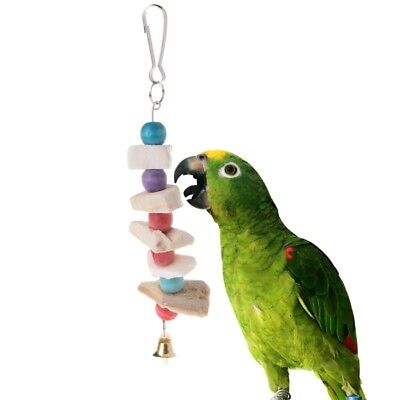 Parrot Teeth Grinding Toys Bird Squirrel Cuttlefish Bone Chewing Beads With Bell