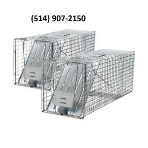 Cage moufette marmotte raton sure et efficace