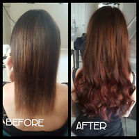 HAIR EXTENSION PROMO $50 OFF