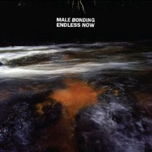 MALE BONDING - ENDLESS NOW  CD ROCK HARDROCK NEUWARE