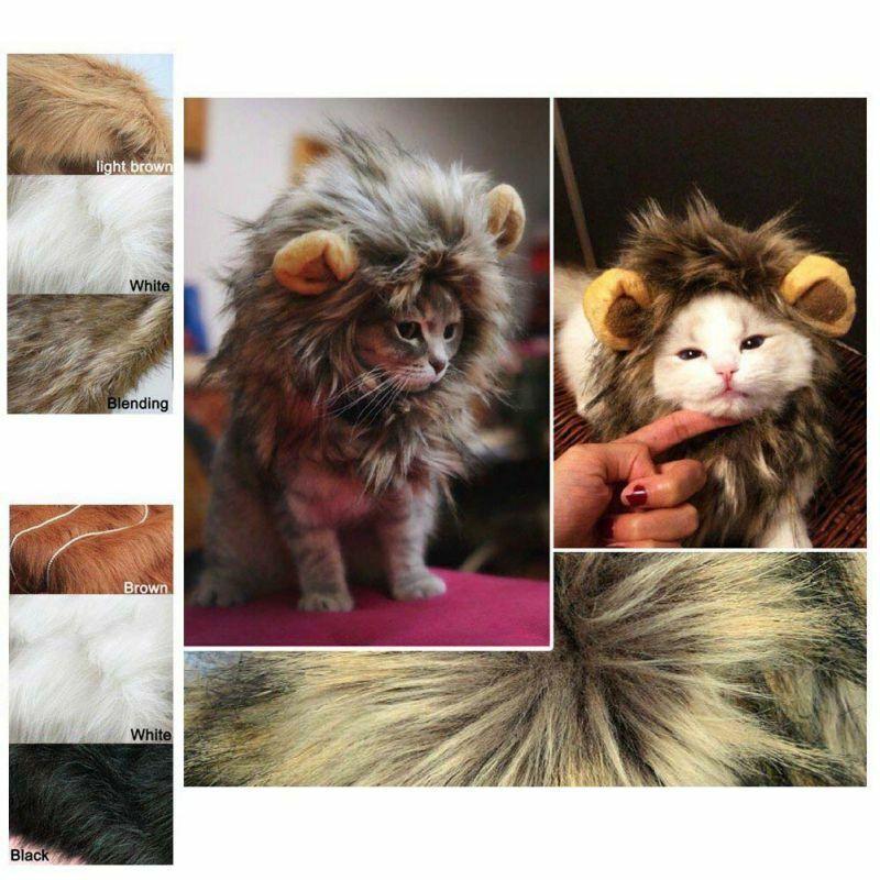 Wild Cat - Kitten Wig Dress Up Cosplay Costume Wig Personalised Hat Headwear