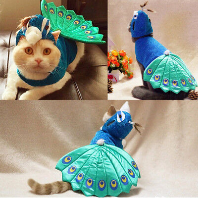 Fashion Pet Costume Peacock Design Animal Cosplay Clothes for Dog Cat Outfit Hot 6