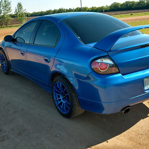 Neon srt4 10k or a new toy