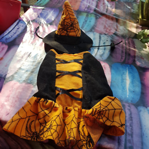 Small Witch costume for dog